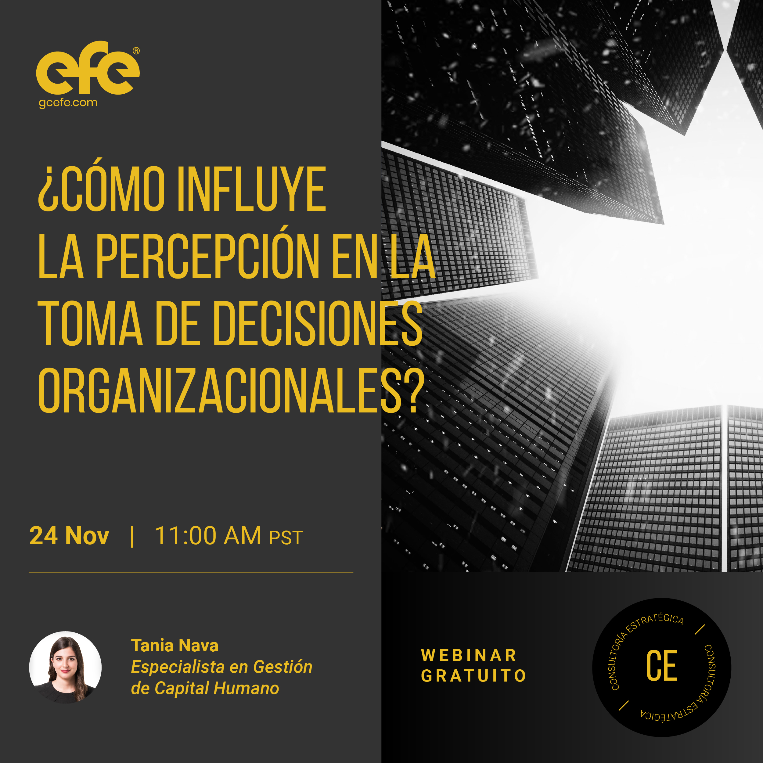 Grupo Consultor EFE™ -