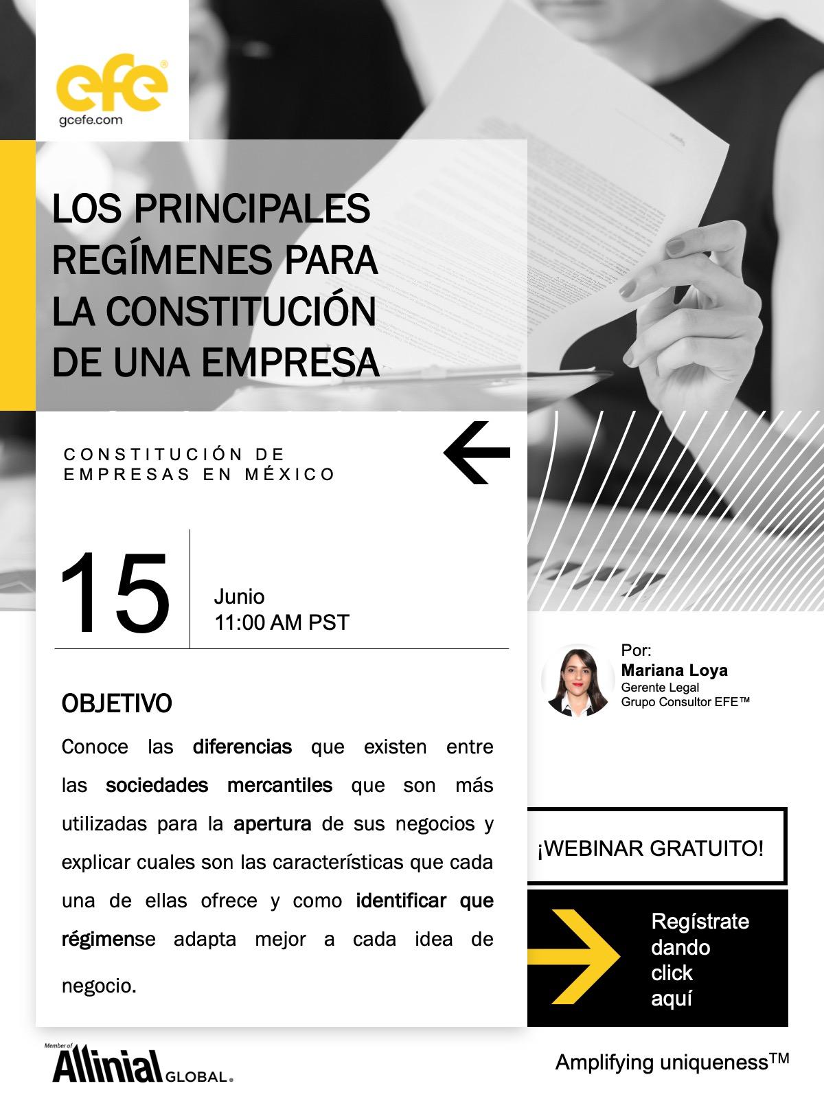 Los Principales Regímenes Para La Constitución De Una Empresa